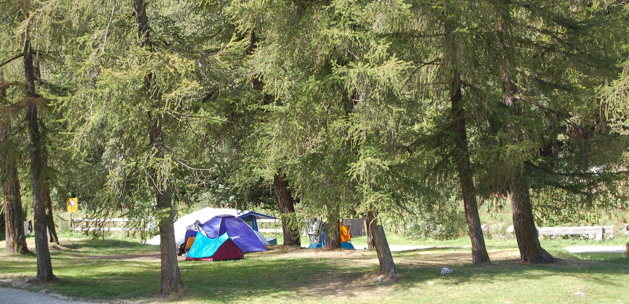 Emplacements de camping ombragés